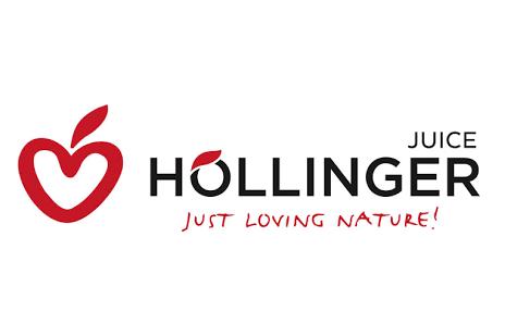 Hollinger Logo
